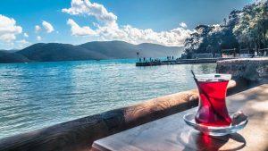hibiscus tea by the lake